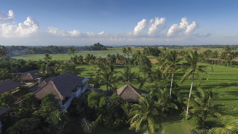 Kaba Kaba Estate 231 720109799451 Tropical Paradise