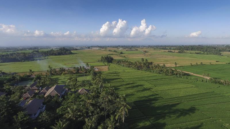 Kaba Kaba Estate 231 963297411755 Tropical Surround