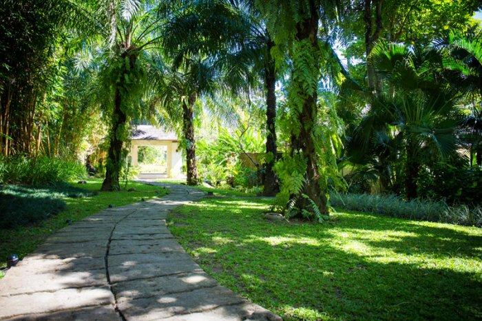 Arsana Estate 232 498925056731 Courtyard Walk Through Palm Trees