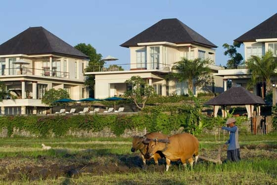 Sanur Residence 233 262513176038 Farmer